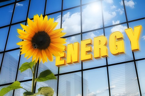 Energy, Sunflower, Font, Solar