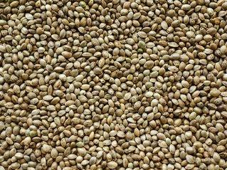hemp seed texture