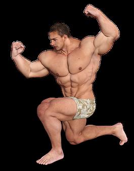 Man, Muscles, Fitness Studio, Sixpack