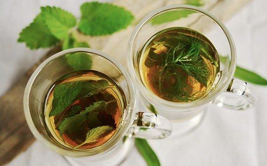 herbal tea 1410565 340