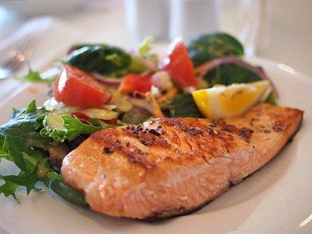 salmon 518032 340